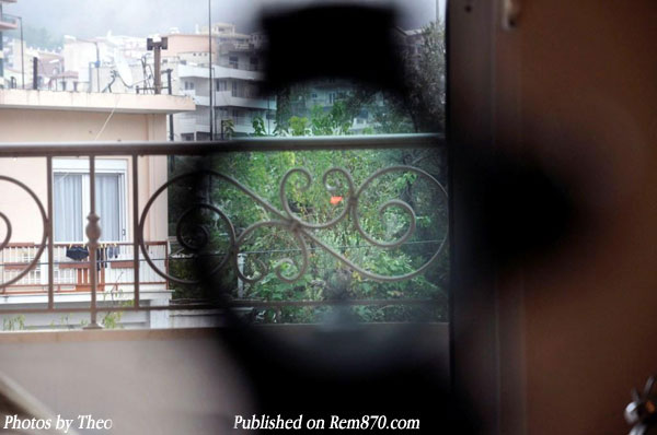 Nikon Monarch Dot Sights