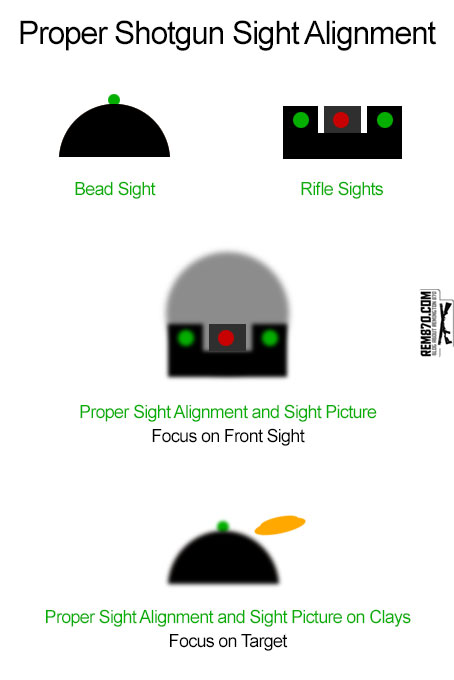 Proper Shotgun Sight Alignment and Sight Picture
