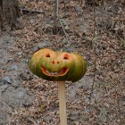 Pumpkin on Shooting Range