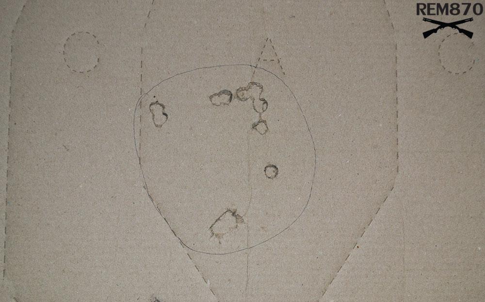 4.5 inches Remington Buckshot Pattern on 10 feet: