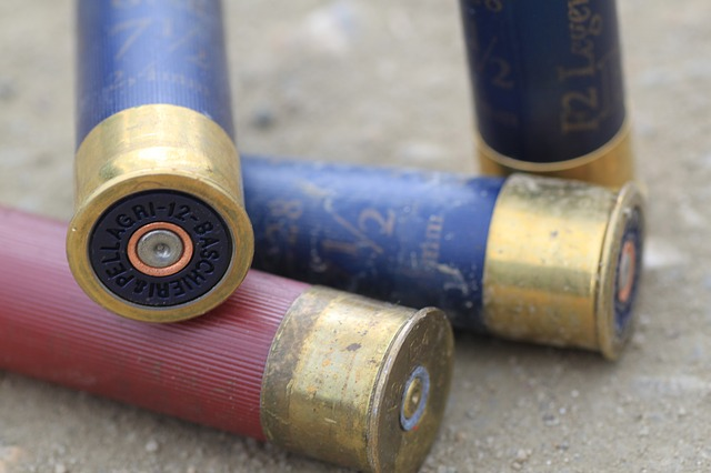 The Best Shotgun Ammo for Home Defense: Buckshot, Birdshot, Slugs?
