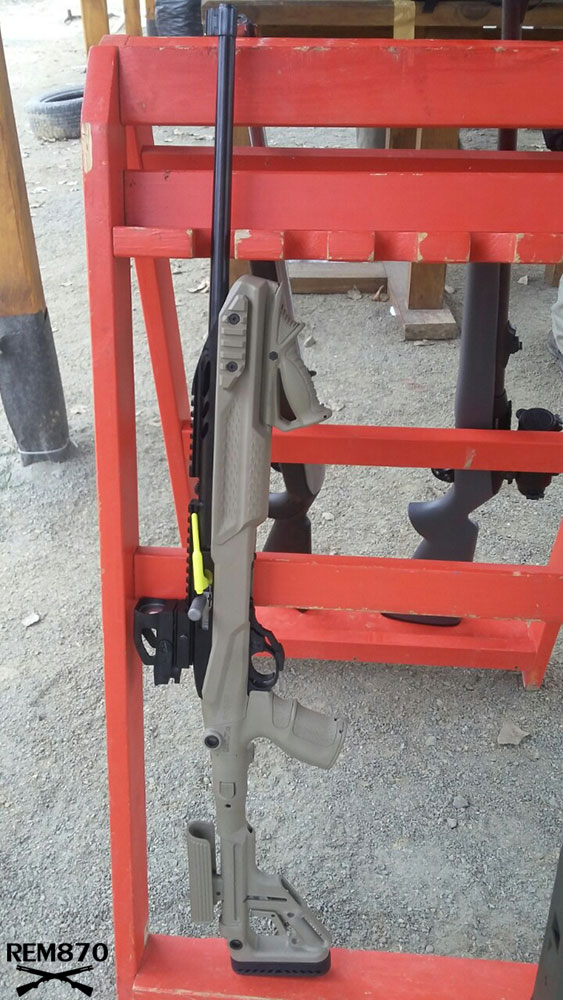 Ruger 10/22 with Fab Defense Stock