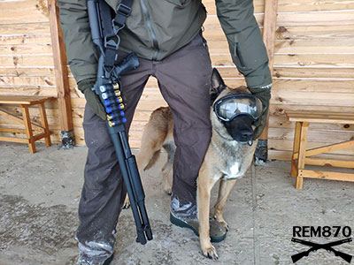 Remington 870 Police, Malinois Dog and Rex Specs glasses